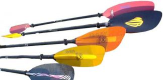 Best Paddle For Kayak Fishing