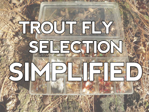 Choosing trout flies simplified: 2 super-easy methods